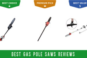 Best gas pole saw reviews